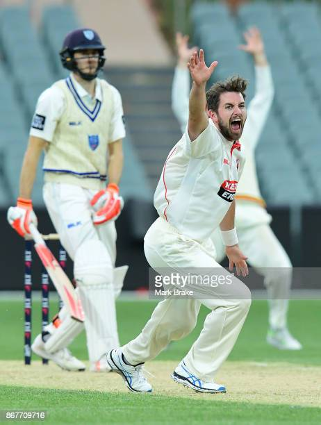 Chadd Sayers of South Australia appeals for LBW against New South Wales Kurtis Patterson during day three of the Sheffield Shield match between South...