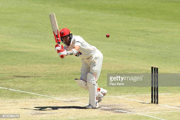 Chadd Sayers of South Australia bats during day three of the Sheffield Shield match between Western Australia and South Australia at WACA on November...