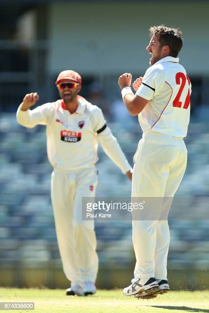 Chadd Sayers of South Australia celebrates the wicket of Ashton Turner of Western Australia during day three of the Sheffield Shield match between...