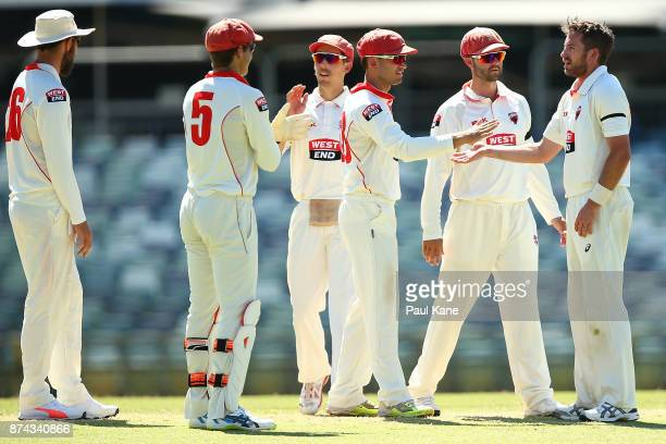 Chadd Sayers of South Australia celebrates the wicket of Shaun Marsh of Western Australia during day three of the Sheffield Shield match between...