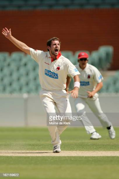 Chadd Sayers of the Redbacks appeals for a wicket during day two of the Sheffield Shield match between the South Australian Redbacks and the New...