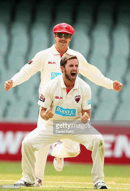 Chadd Sayers of the Redbacks ccelebrates after taking a wicket during day four of the Sheffield Shield match between South Australia and Queensland...