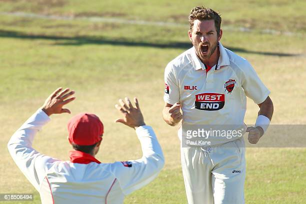 Chadd Sayers of the Redbacks celebrates after dismissing Adam Voges of the Warriors for a duck during day three of the Sheffield Shield match between...