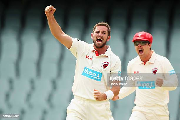 Chadd Sayers of the Redbacks celebrates after taking a wicket during day four of the Sheffield Shield match between South Australia and Queensland at...