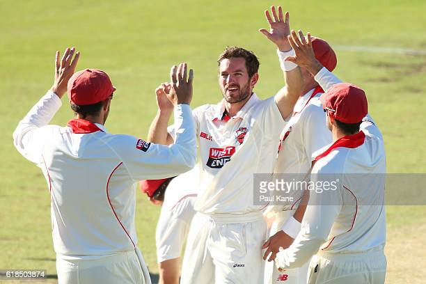 Chadd Sayers of the Redbacks celebrates the wicket of Michael Klinger of the Warriors during day three of the Sheffield Shield match between Western...