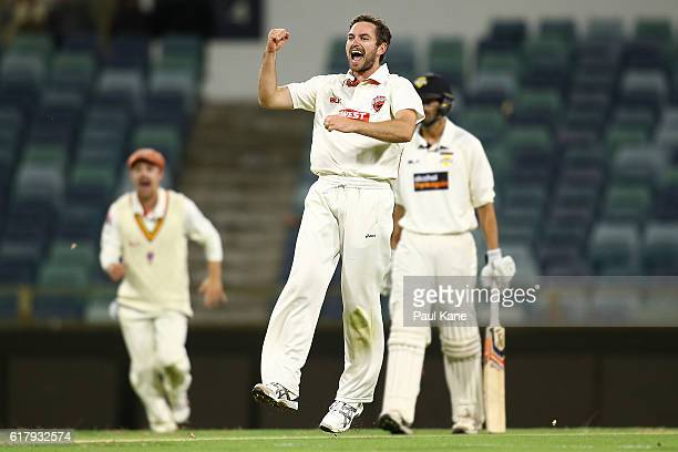 Chadd Sayers of the Redbacks celebrates the wicket of Sam Whiteman of the Warriors during day one of the Sheffield Shield match between Western...