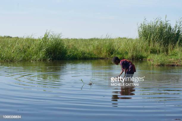 A Chadian boy fills a bucket with water from the Lake Chad on November 8 2018