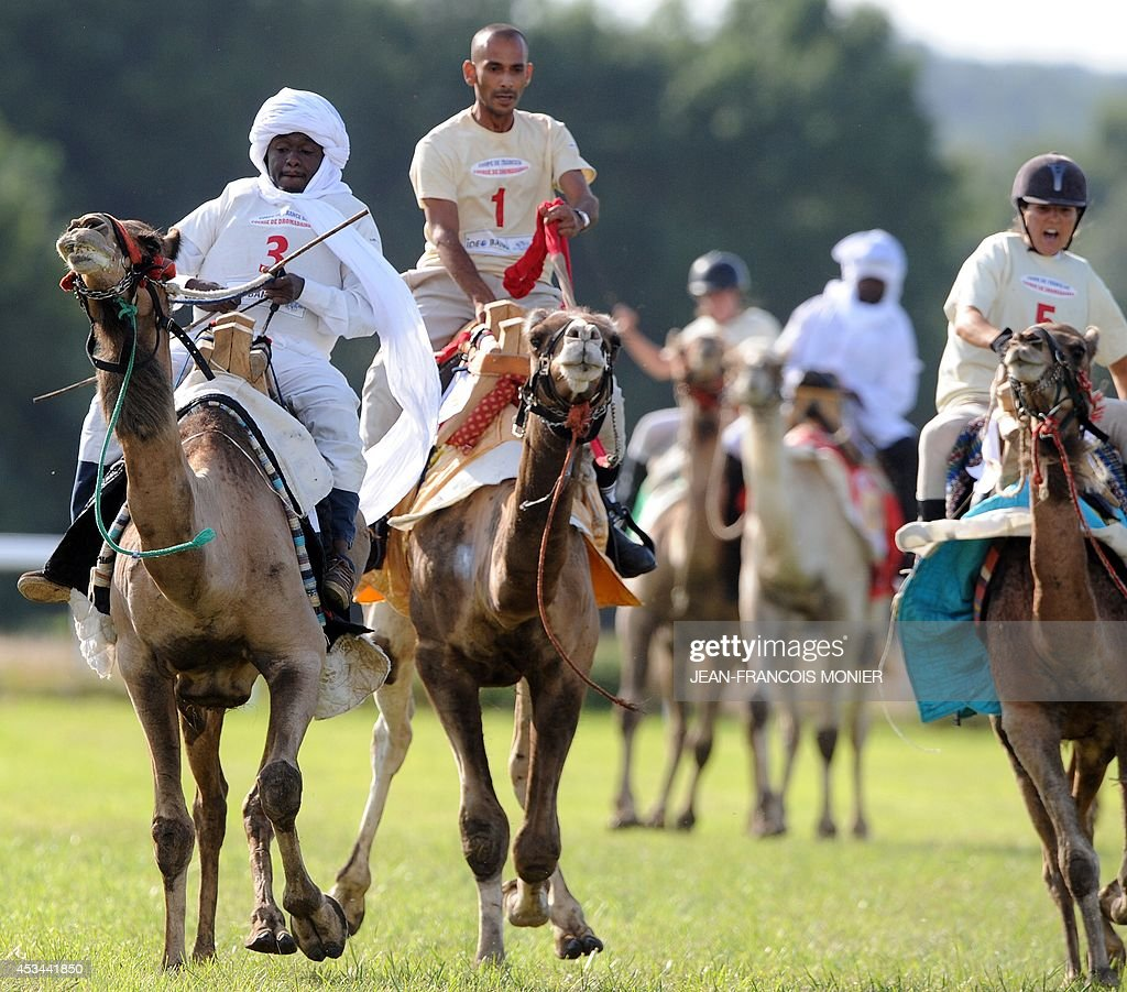 Chadian Hissein Wiledah, Franco-Moroccan Glif Nanir and French Clotilde Wibaux ride camels during a French Cup of camel races on August 10, 2014 on the horserace track of La Chartre-sur-le-Loir, western France. Unusual in these latitudes, eight dromaderies that have never seen the desert, took part in two races of 1000 meters.
