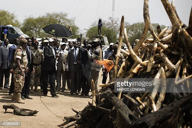 Chadian President Idriss Deby lights a pyre on which over a thousand kilos of elephant tusks were incinerated during a ceremony marking the 50th...