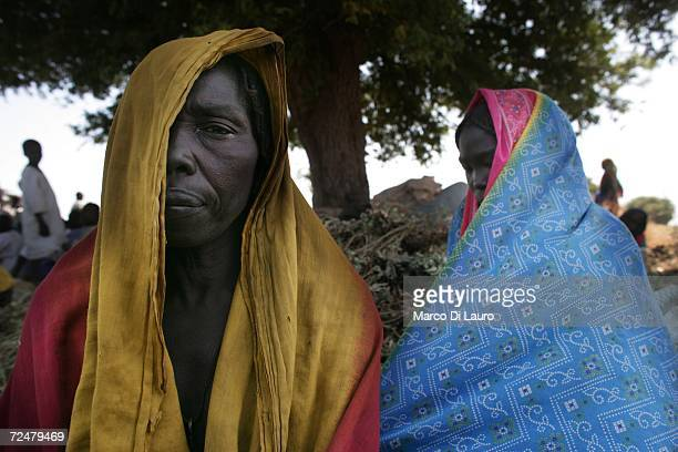 Chadian village women shelter under trees after an attack on their village forced them to flee on November 9 2006 in a camp for internally displaced...