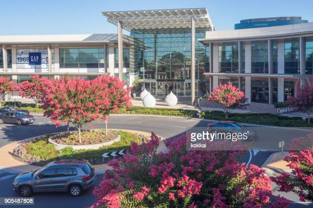 chadstone shopping centre - crepe myrtle trees - crepe myrtle tree stock pictures, royalty-free photos & images