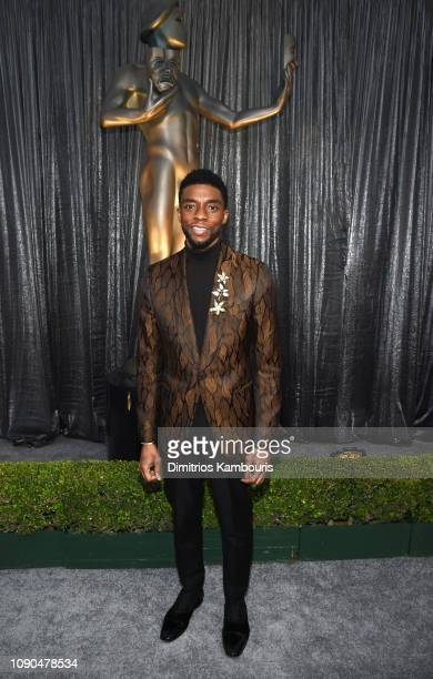 Chadwick Boseman attends the 25th Annual Screen ActorsGuild Awards at The Shrine Auditorium on January 27, 2019 in Los Angeles, California. 480595