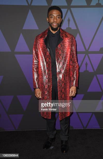 Chadwick Boseman attends the Academy of Motion Picture Arts and Sciences' 10th annual Governors Awards at The Ray Dolby Ballroom at Hollywood...