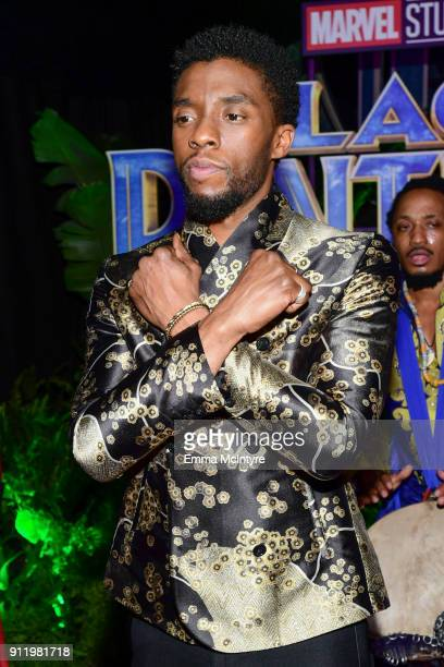 """Chadwick Boseman attends the premiere Of Disney and Marvel's """"Black Panther"""" at Dolby Theatre on January 29, 2018 in Hollywood, California."""
