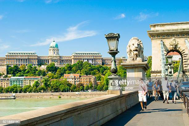 Chain Bridge and Royal Palace in Budapest