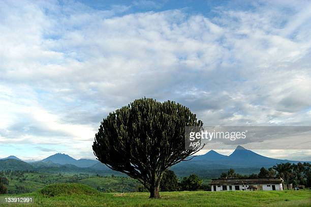A chain of volcanoes borders the Virunga National Park in the Democratic Republic of Congo 28 April 2004