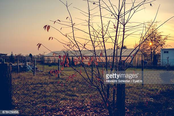 chainlink fence against houses at sunset - albrecht schlotter stock pictures, royalty-free photos & images