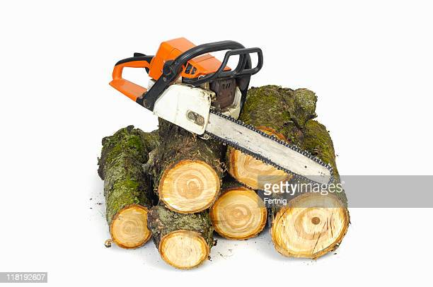 Chainsaw and logs on white