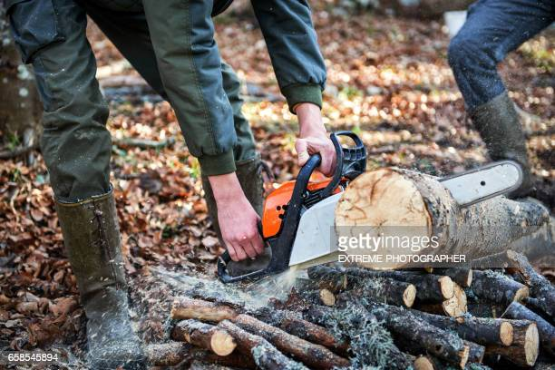 chainsaw cutting wood - firewood stock pictures, royalty-free photos & images