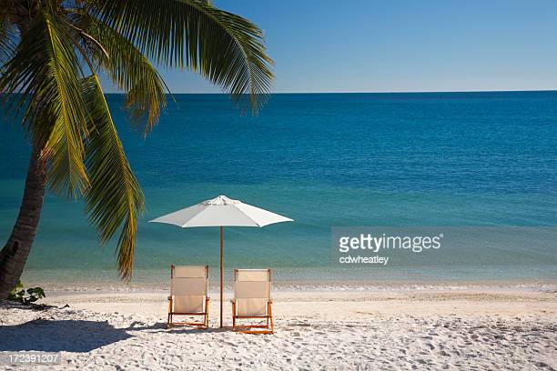 chair on florida keys beach - florida keys stock pictures, royalty-free photos & images