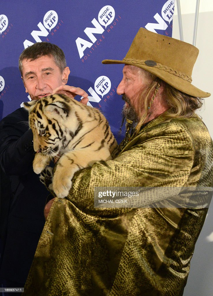 Chairman of Cirkus JOO Jaromir Joo, Chairman of Cirkus JOO (R) holds a baby tiger named Fred as he congratulates Czech billionaire, Andrej Babis , leader of 'ANO' movement ('YES') and party members in Prague, after polling stations closed on October 26, 2013, the second day of the general elections. The Social Democrats (CSSD) scored 21.30 percent, ahead of the surprise populist newcomer ANO movement of billionaire Andrej Babis with 18.71 percent and the Communists with 15.66 percent.