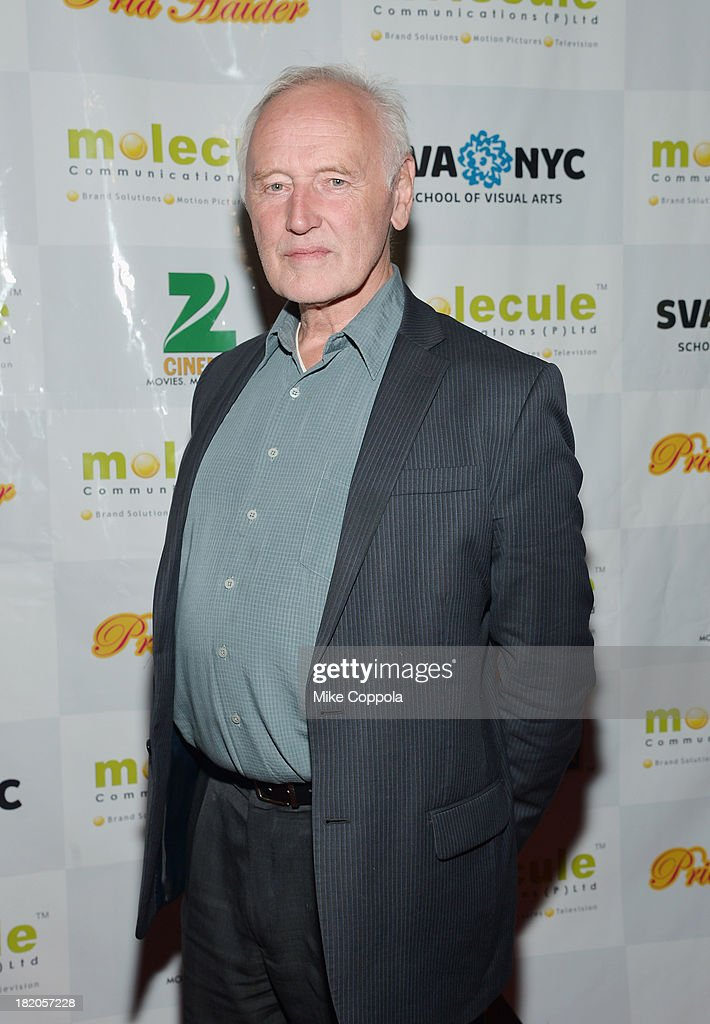 Chairman of the Film, Video, and Animation Department at The School of Visual Arts Reeves Lehmann attends the 'Ticket 2 Bollywood: Cinema Beyond Boundaries' Opening Night Screening at SVA Theater on September 27, 2013 in New York City.