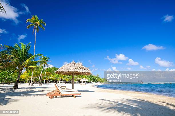 chairs on tropical beach - honduras stock pictures, royalty-free photos & images