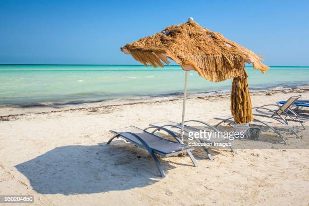Chaiselongue in a beach in Isla Holbox Quintana Roo Mexico