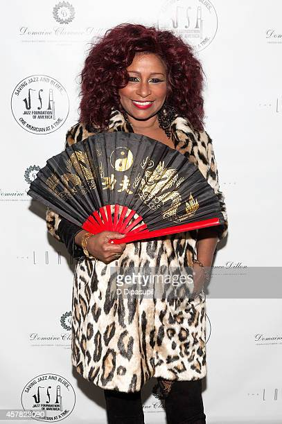 Chaka Khan attends The Jazz Foundation Of America's 13th Annual A Great Night In Harlem Gala Concert at The Apollo Theater on October 24 2014 in New...
