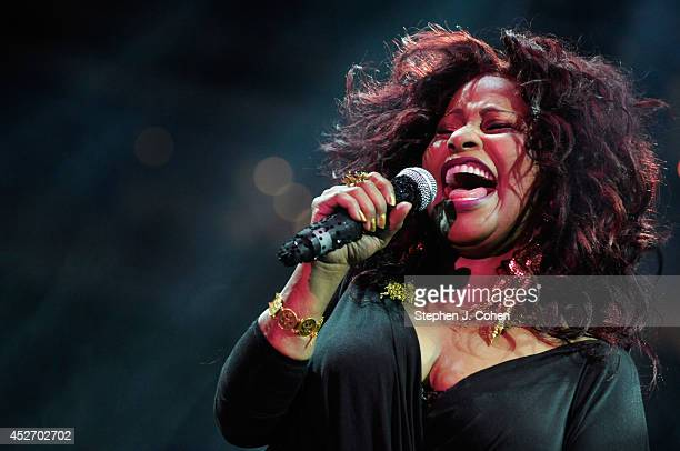 Chaka Khan performs during day 1 of the Macy's Music Festival at Paul Brown Stadium on July 25, 2014 in Cincinnati, Ohio.