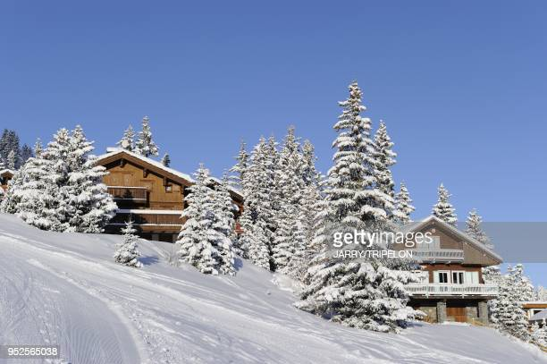 Chalets along the ski slopes, Courchevel 1850 ski resort, Trois Vallees skiing area, Tarentaise valley, Savoie department, Rhone Alpes region, France.