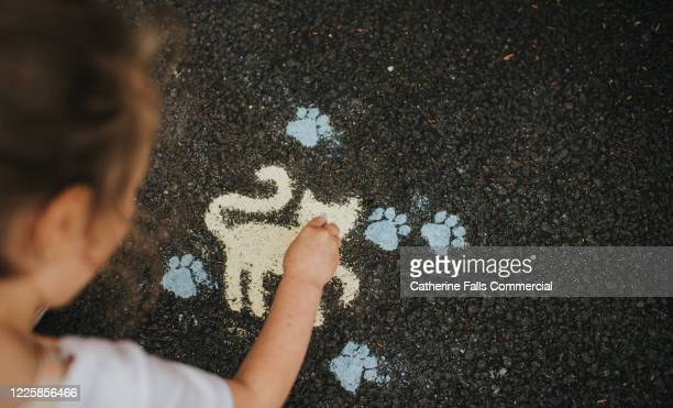 chalk cat - temporary stock pictures, royalty-free photos & images