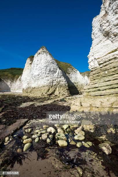 Chalk cliffs at Flamborough Head, North Yorkshire, England