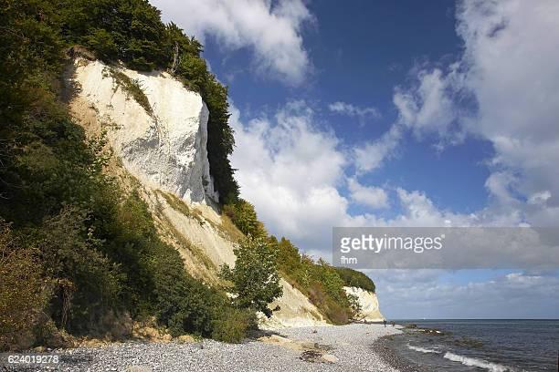 Chalk cliffs at Jamund National Park/ baltic sea/ Rügen Island/ Germany