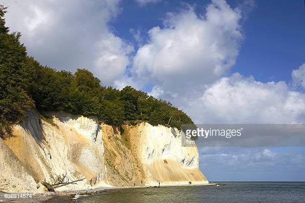 Chalk cliffs at Rügen Island/ Germany