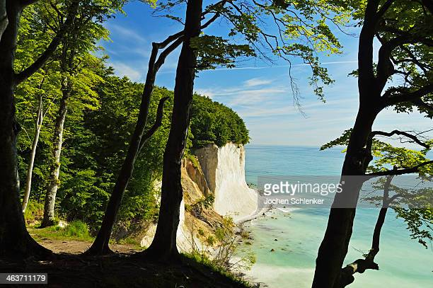 chalk cliffs, jasmund national park, ruegen island - 炭酸石灰 ストックフォトと画像