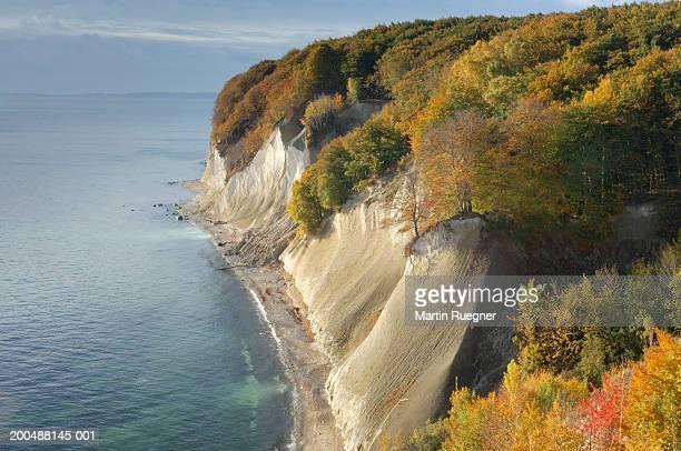 Chalk cliffs on coastline