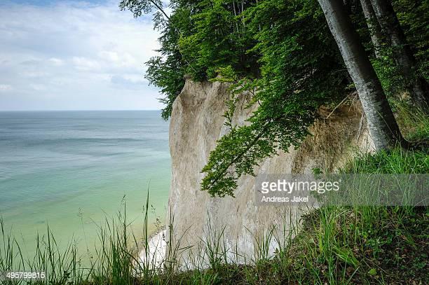 Chalk cliffs on the coast, Rugen island, Rugen, Mecklenburg-Western Pomerania, Germany