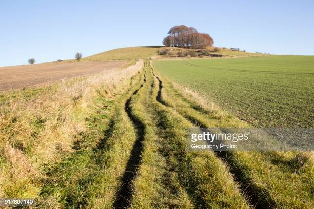 Chalk landscape in winter Woodborough Hill Vale of Pewsey Wiltshire England UK