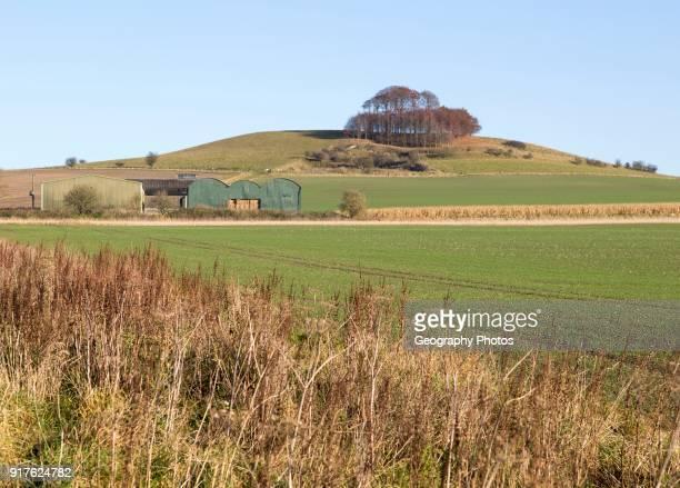 Chalk landscape in winter Woodborough Hill Wiltshire England UK