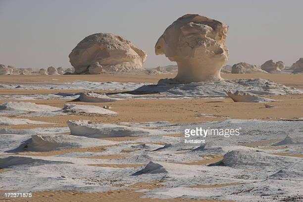 Chalk mushrooms in the White Desert