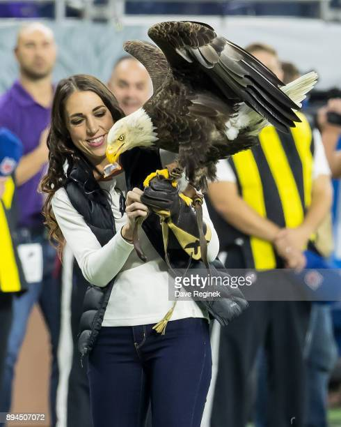 Challenger the bald eagle soars at Thanksgiving Day Game between the Detroit Lions and the Minnesota Vikings during an NFL game at Ford Field on...