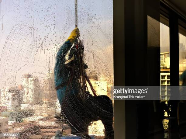 challenging job - cleaning window. - window cleaning stock photos and pictures