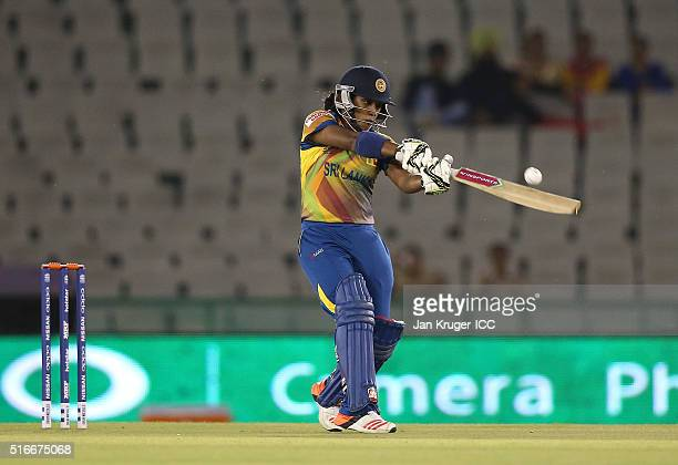 Chamari Atapattu of Sri Lanka hits out during the Women's ICC World Twenty20 India 2016 match between Sri Lanka and Ireland at the IS Bindra Stadium...