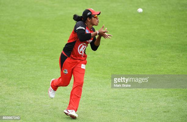 Chamari Atapattu of the Melbourne Renegades takes a catch during the Women's Big Bash League match between the Adelaide Strikers and the Melbourne...
