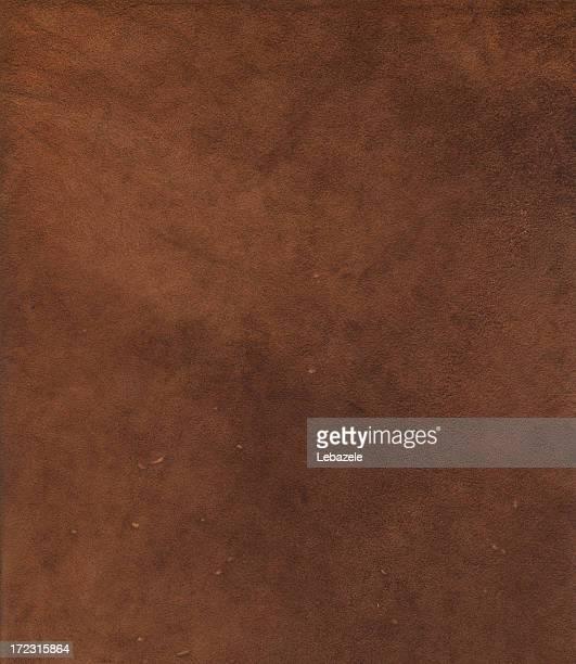 XXL Chamois Leather Detail