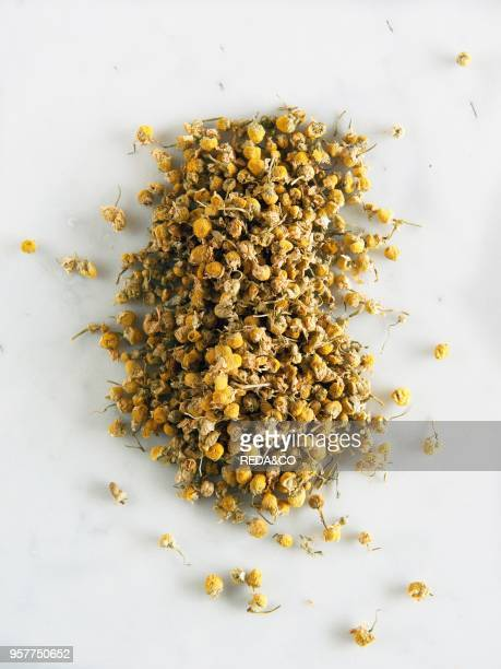 Chamomile Dry Flowers Italy Europe