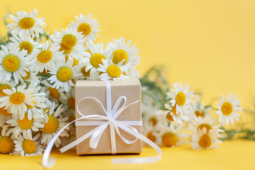 Chamomile flowers and gift or present box on yellow background. Holiday celebration concept. 1159384890