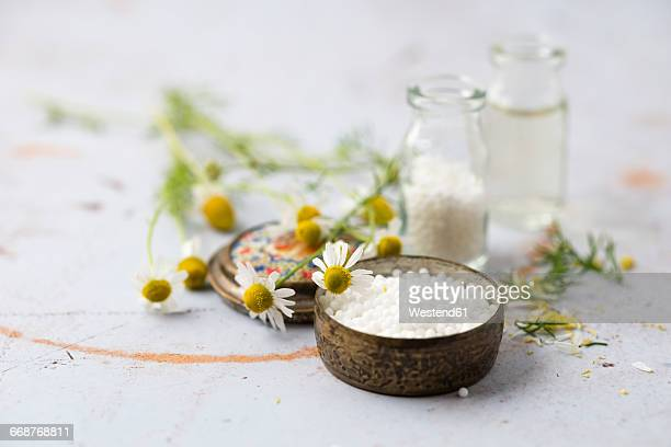 chamomile flowers and globules - homeopathic medicine stock photos and pictures
