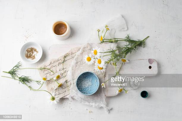 chamomile flowers, globules, tea and salve made of chamomile - homeopathic medicine stock photos and pictures